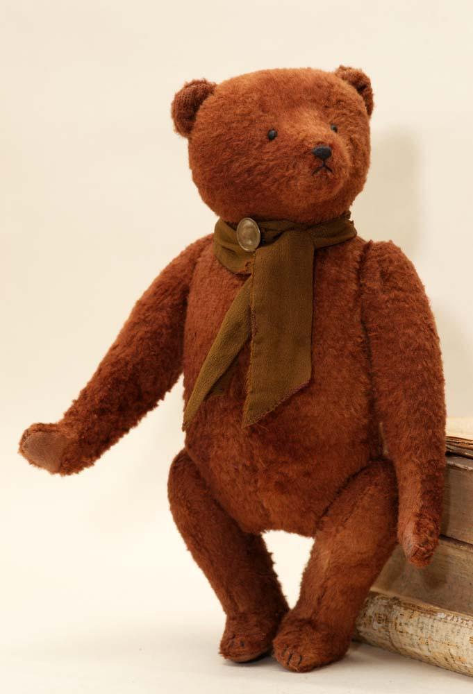 английский медведь коллекционный, Гипатия